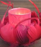 Flor de Plumas Rojas